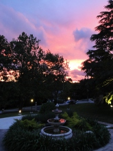 Dusk - accommodation at Leura